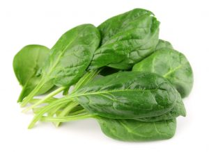 Spinach on white close up