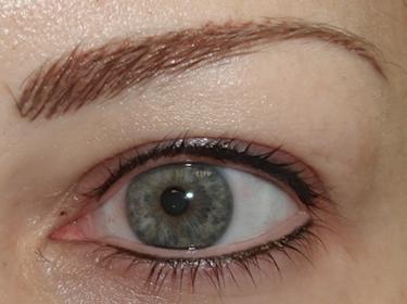 micropigmentation (204)